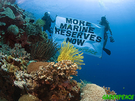greenpeace-marine-reserves-banner.jpg