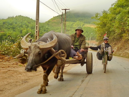 02-vietnam-bambuszkerek.JPG