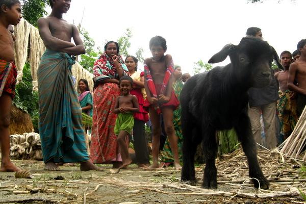 15-bangladesh-char-battia.JPG