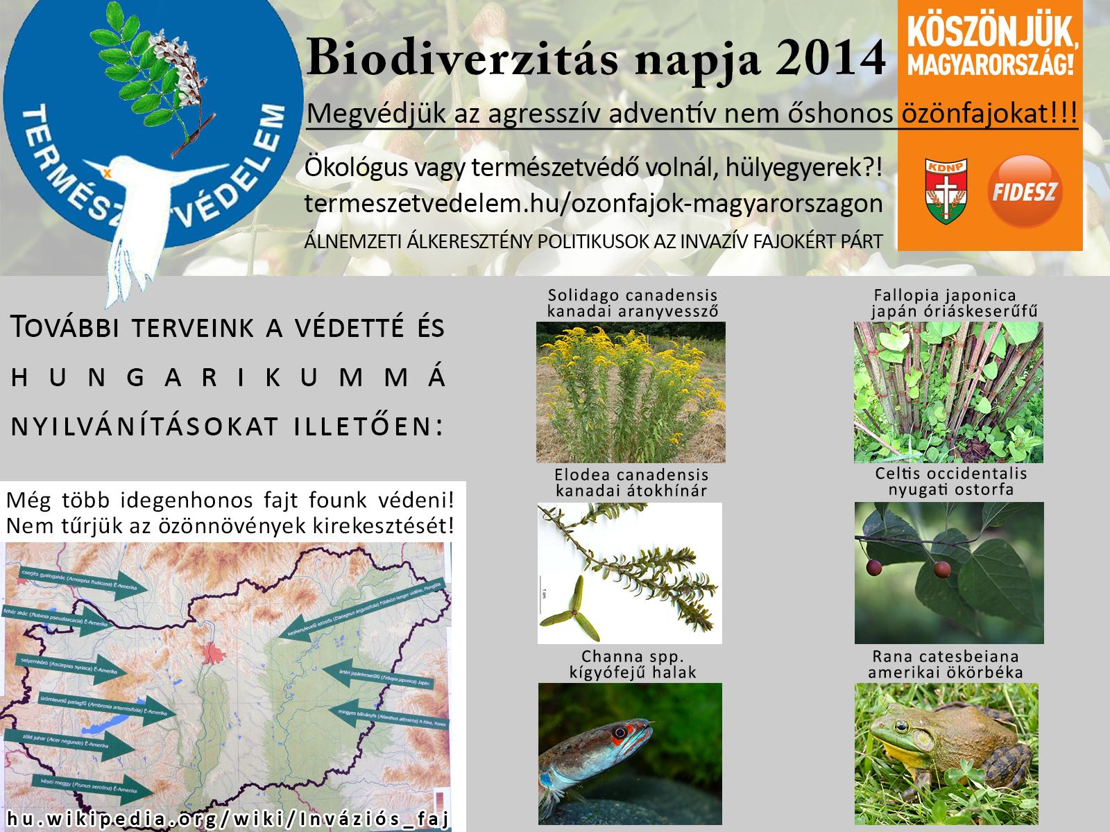 biodiverzitás napja.jpg