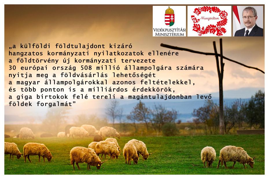 elolanc_fazekas_foldtorveny3.jpg