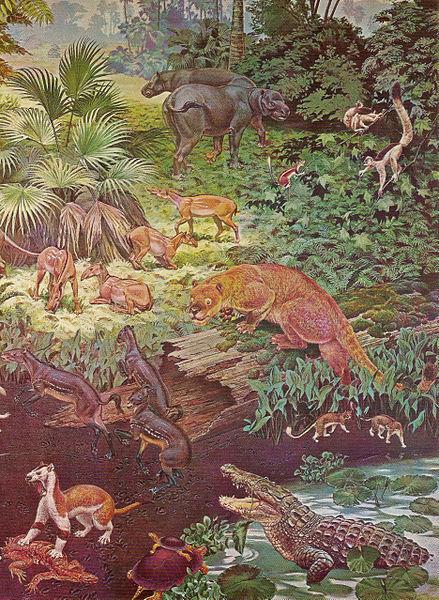 439px-Eocene[1].jpg
