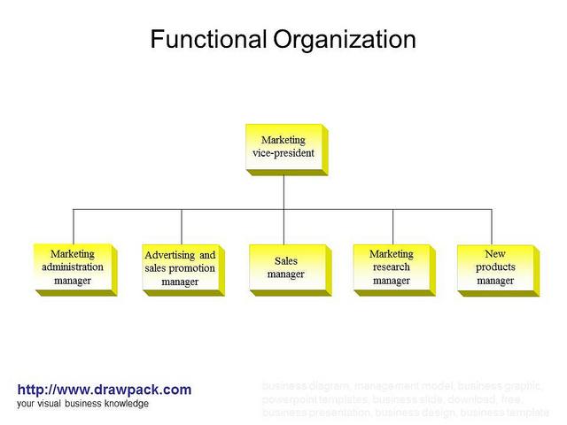 funkcionalis_szervezet.jpg