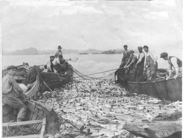 cod-fishing-2-1921-ci.jpg