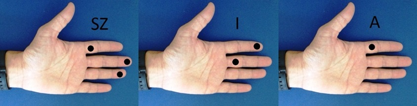kézbe braille.jpg