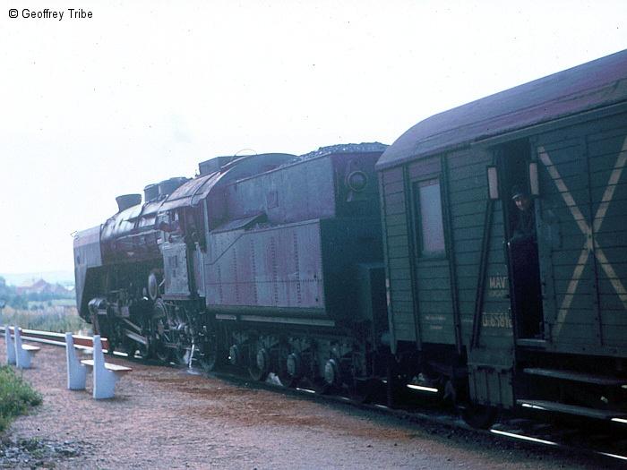 196905xx-C0082.jpg