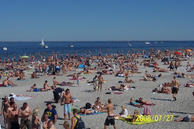 Amager strand 2008.jpg