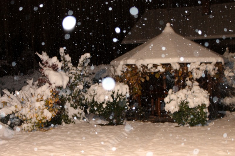 Es a téli kert….jpg