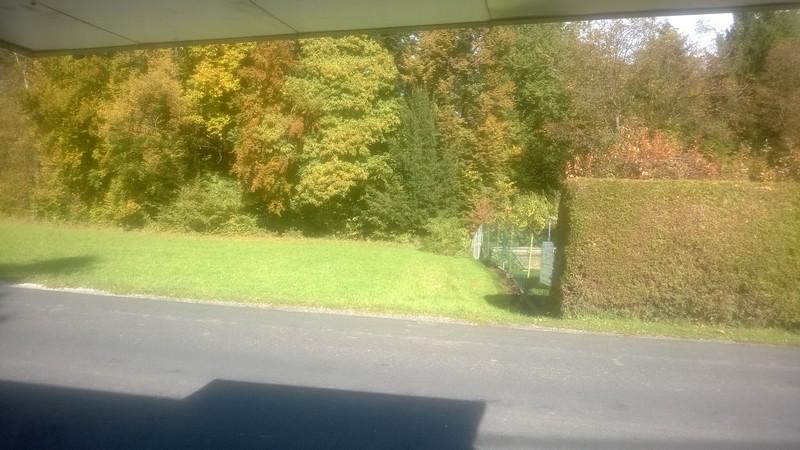 Ezt látom a ,,munkahelyem,, ablakából… minden szerdán….jpg