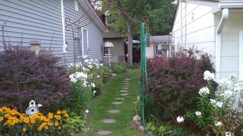 Házunk kertjéhez a bejárat.jpg