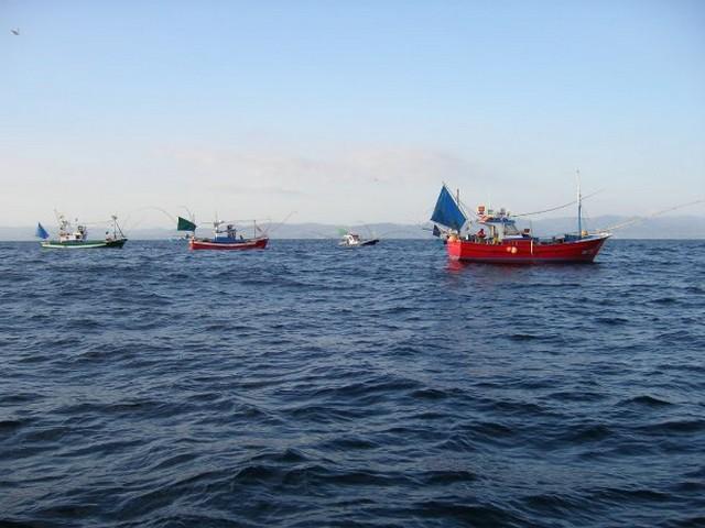 Halászhajók 2.jpg
