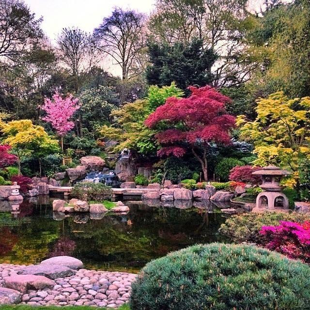 Holland Park2.jpg