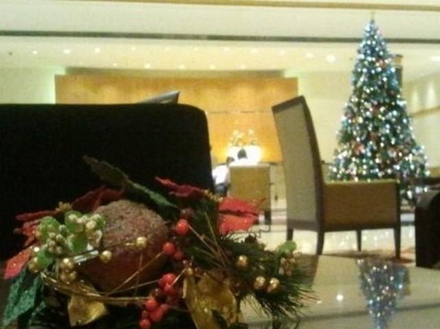 India 2 karácsonyfa.jpg