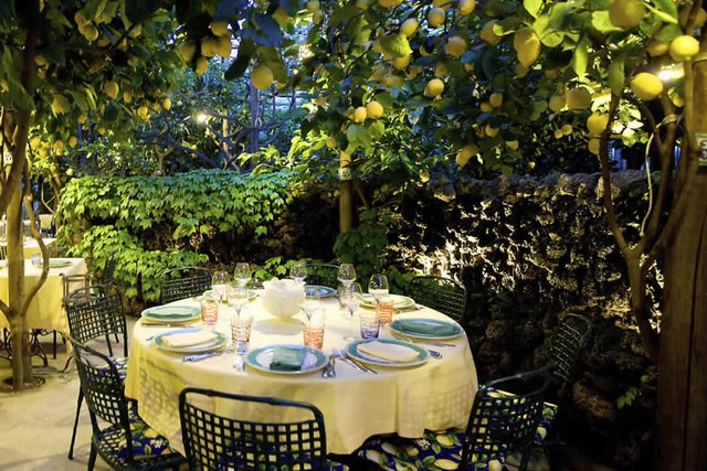 Olaszország citromfa.jpg
