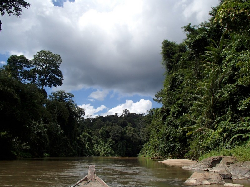 Ulu Muda, a folyó mentén.JPG