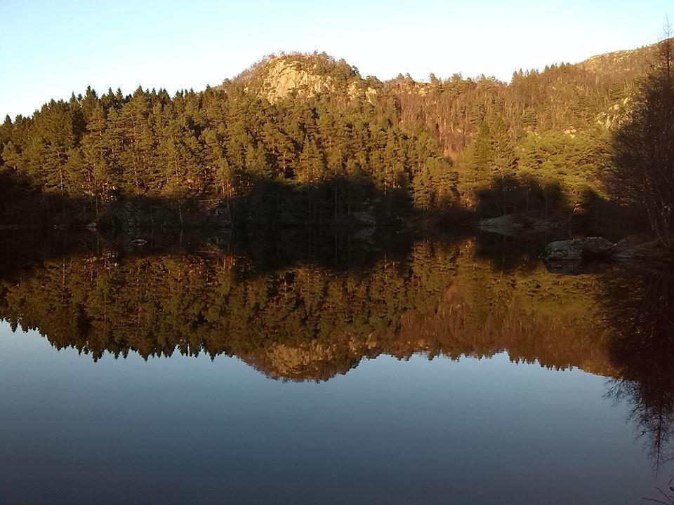 bergen_norvegia.jpg