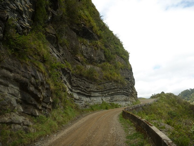 road_te_urewera_nationa_park.JPG