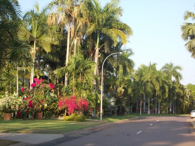 utcakép 5.JPG