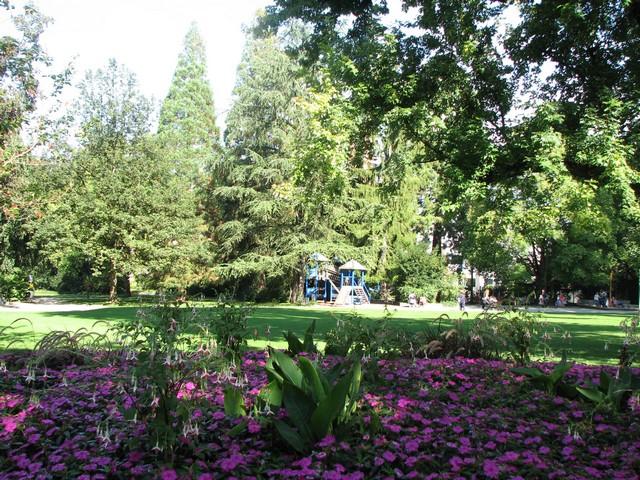 virágos park és gyerksziget a Belvárosban.jpg