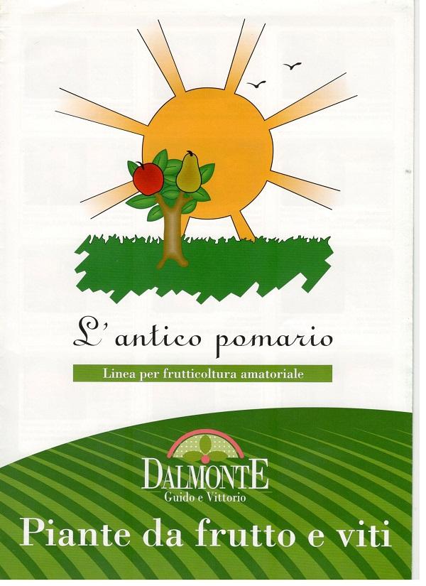 Néhány hagyományos gyümölcsfajta Olaszországból
