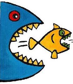 nagy hal......jpg