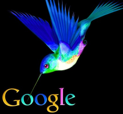 google-kolibri-algoritmus.jpg