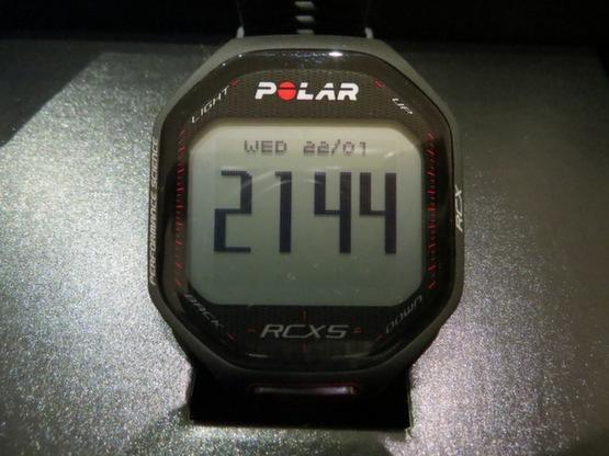 polar_rcx5_1661.jpg