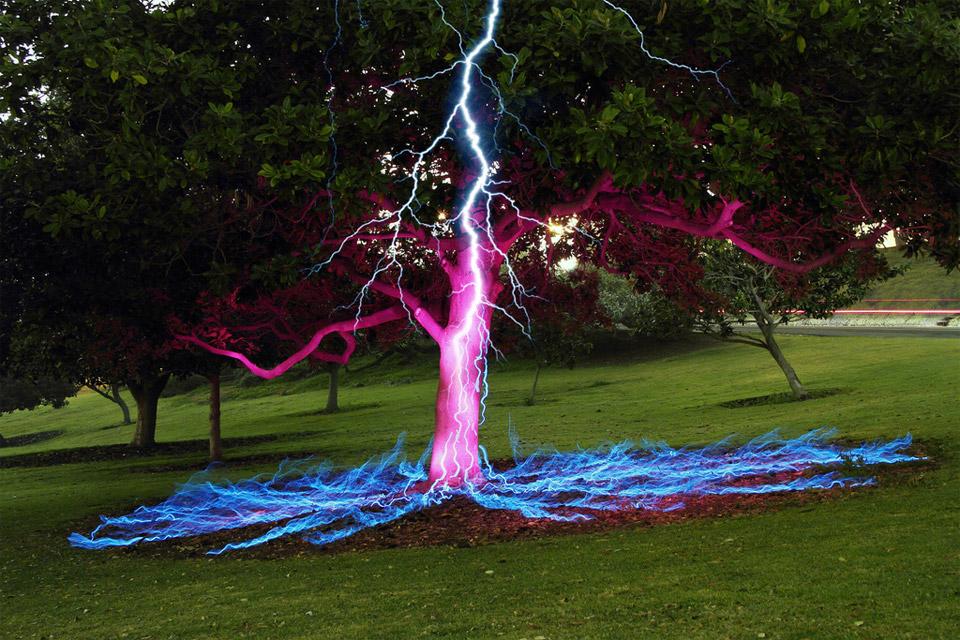 long-exposure-tree.jpg