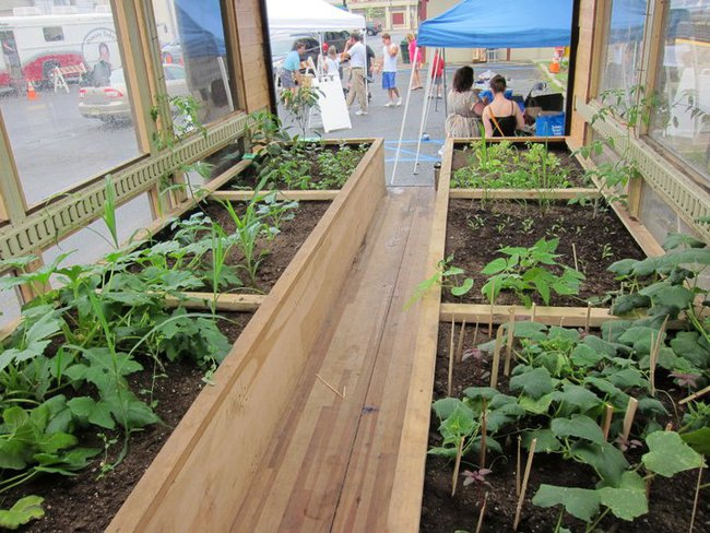 Raised-beds-mobile-greenhouse2.jpg.650x0_q85_crop-smart.jpg