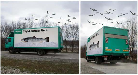 merkur-warenhandels-supermarkets-fish-truck-small-92807_1.jpg