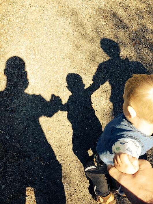 shadows 2014s.jpg