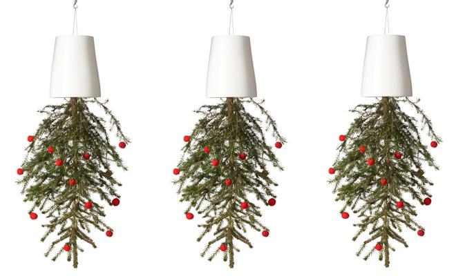 Christmas-Tree-Boskke.jpg