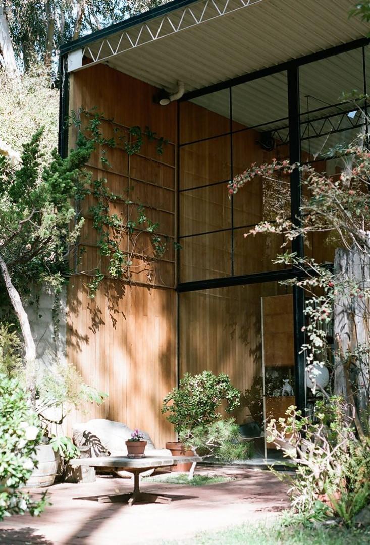 eames-house-la-garden-view-gardenista.jpg
