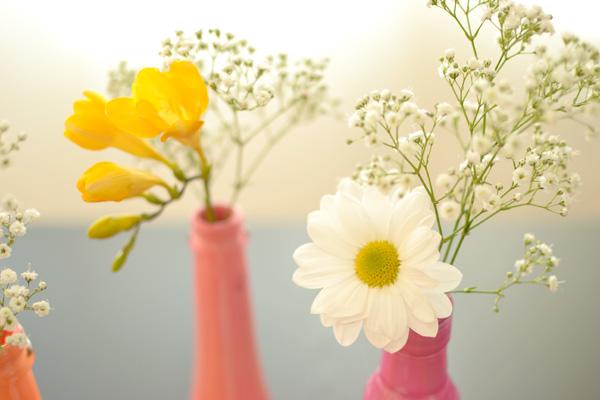 flores en botellas.jpg