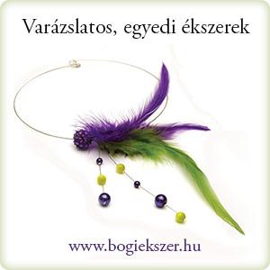 20130210_bogiekszer.jpg
