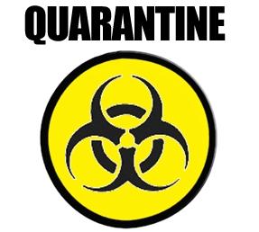 quarantine2.jpg
