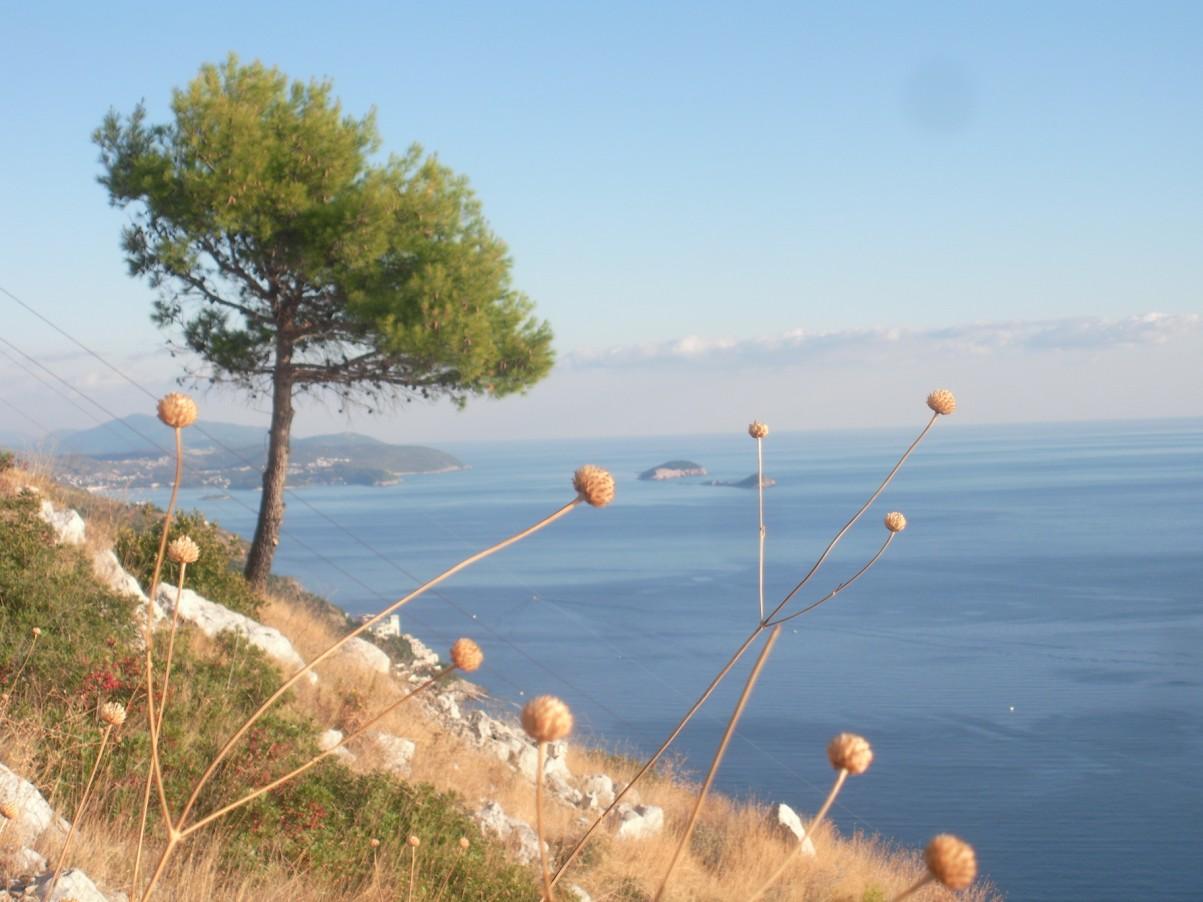 Dubrovnik Srd hill.jpg
