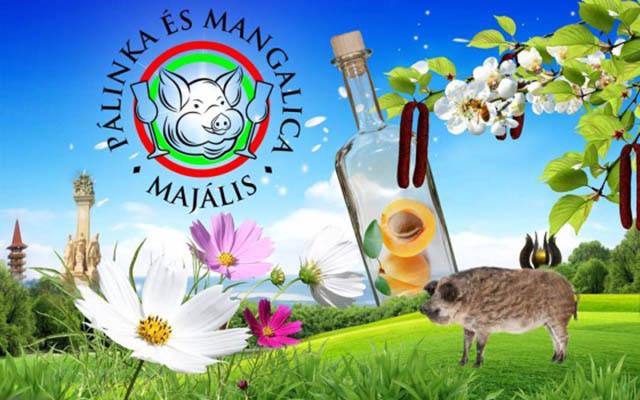 iii-palinka-es-mangalica-majalis-zalaegerszeg-18733-3-l.jpg