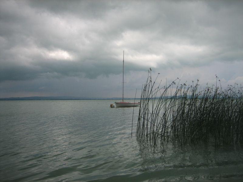 Vankó Antal_vihar előtt.jpg