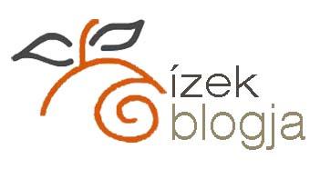 izek_blogja_logo_kicsi.jpg