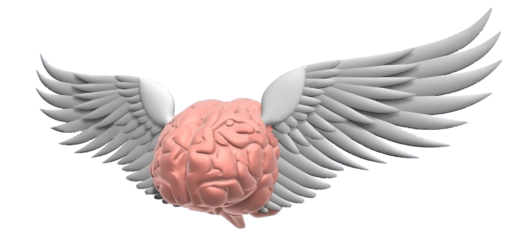 Flying-brain 2.jpg