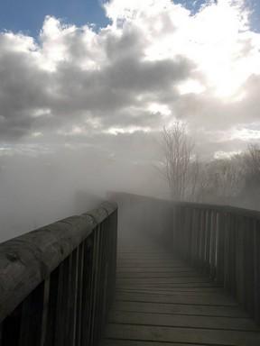 fog-bridge.jpg