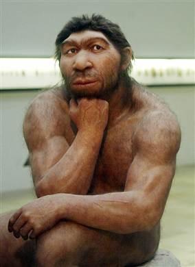 100706-neanderthal-vmed-715a.grid-6x3.jpg