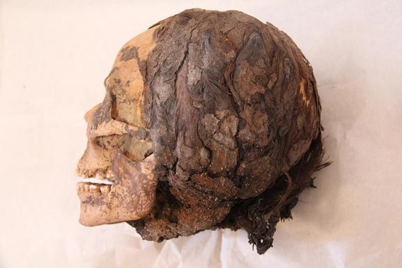 amarna-hair-discovery-2.jpg