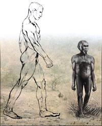 homo_floresiensis1.jpg