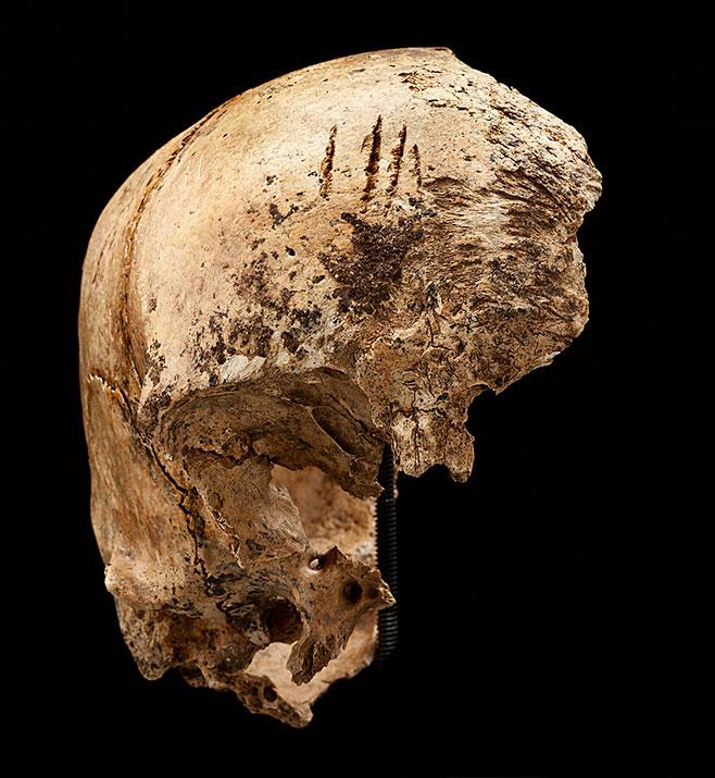 Jamestown-Cannibals-scull-715.jpg
