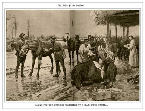 War_Horses_01.jpg