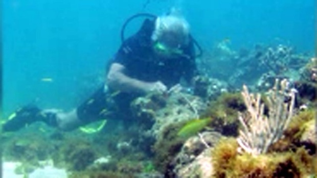 Sunken-ship-near-Haiti-jpg.jpg