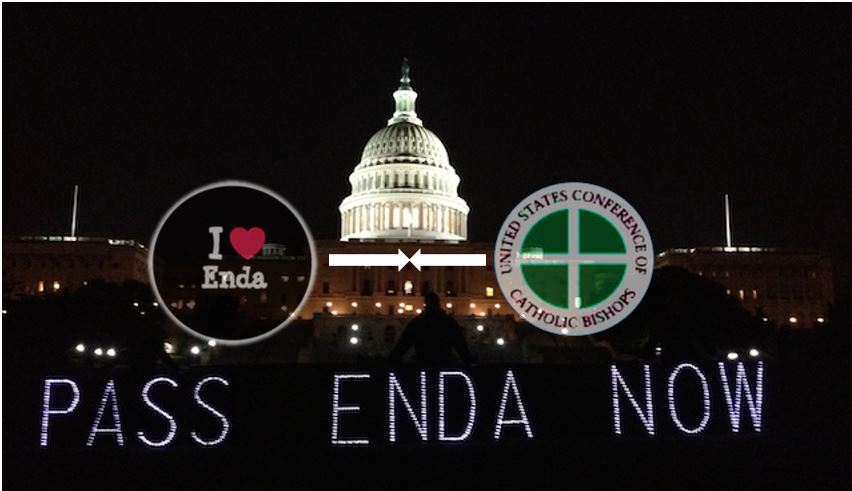 ENDA-Light-Panels-DC-Bishops-I-love-Enda2.JPG