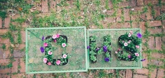 letter-planters nagy.jpg